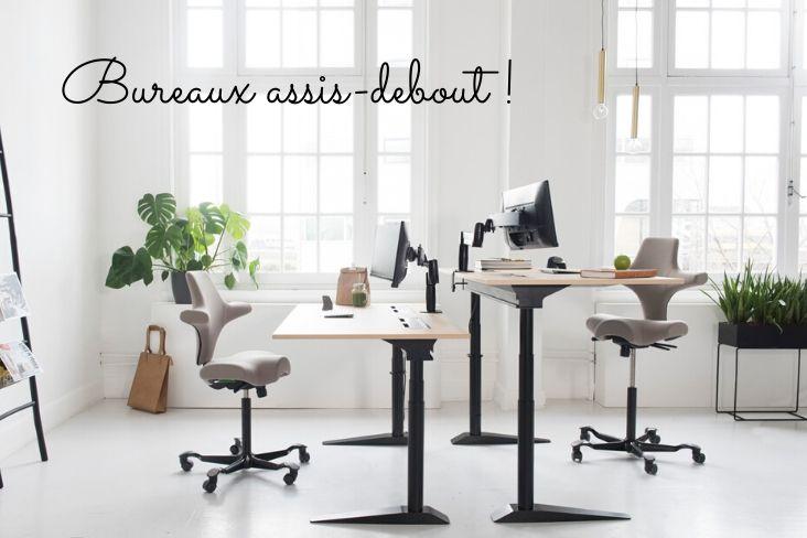 bureau assis-debout de la marque Bakker Elkhuisen
