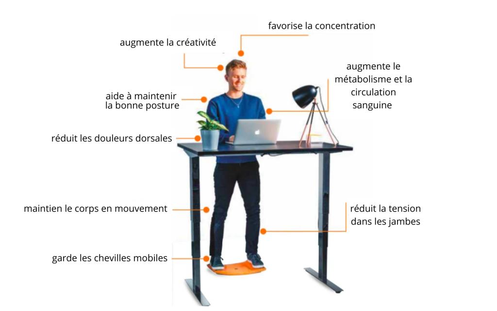 Les avantages du bureau assis-debout avec une Gymba board pour lutter contre la sédentarité